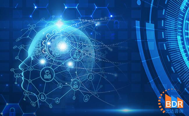 2019年上半年度中国人工智能行业发展报告