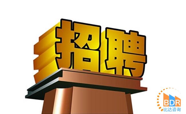 2019年第3季度中国在线求职招聘市场研究报告